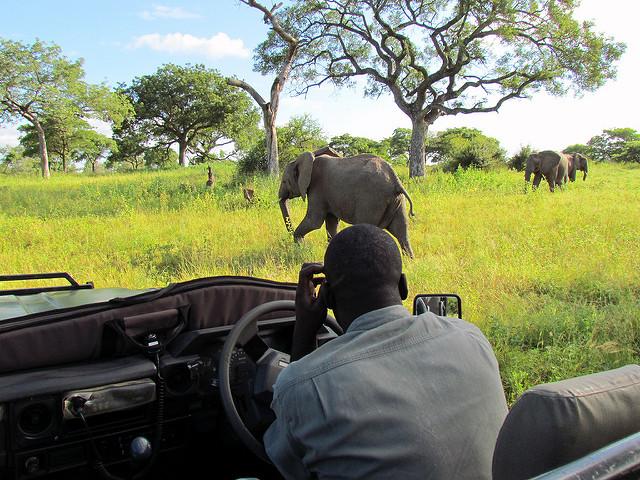3 bonnes raisons de visiter l'Afrique du Sud